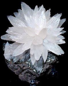 Calcite Flower --- Iraí, Alto Uruguai region, Rio Grande do Sul, Brazil