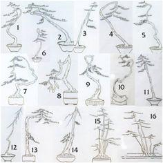 16 variedades de literati o Bunjin