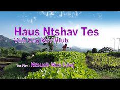 Haus Ntshav Tes Vim Cog Kev Hlub. 2/7/2016