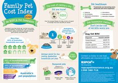 Summer Safety Tips For Dogs [Infographic] Pinterest