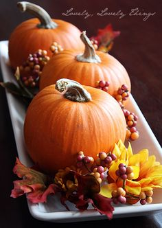 Delightful Pumpkin Centerpiece...this blog features three simple fall centerpieces for under $10.