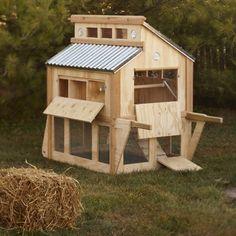 Dream (chicken) house