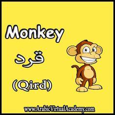 Speak Arabic, Spoken Arabic, Arabic Words, Arabic Lessons, Arabic Alphabet, Arabic Language, Learning Arabic, English Vocabulary, Learn English