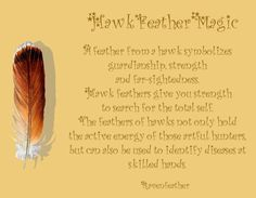 My Original Version of Hawk Feather Magic *Please check your local and federal guidelines for feather collection and possession! Feather Meaning, Feather Symbolism, Animal Symbolism, Wiccan, Witchcraft, Finding Feathers, Hawk Feathers, Feathers, Libros