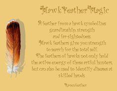 Hawk feather magic