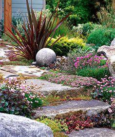 Perennials for Tough Gardens