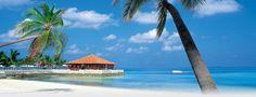 Caribbean // Volare Travel Incorporated