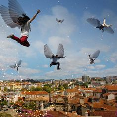 Taking flight - Trygve Skogrand
