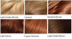 Top 2 Celebrity Sombré Hair Colors 2014 Spring: Dark Brown   best hair color chart matching medium dark brown