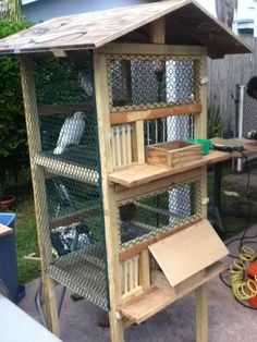 Posts about racing pigeon cage written by GreenDoesEverything Pigeon Cage, Pet Pigeon, Dove Pigeon, Pigeon Bird, Pet Bird Cage, Bird Cages, Fantail Pigeon, Racing Pigeon Lofts, Pigeon Loft Design
