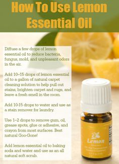 Want to start using essential oils? Read this first! Lemon essential oils is one of the most versatile essential oils! Learn how to use lemon essential oil on a daily basis! Yl Oils, Lemon Essential Oils, Doterra Essential Oils, Essential Oil Blends, Young Living Oils, Young Living Essential Oils, Oils For Life, Healing Oils, Natural Cleaning Products