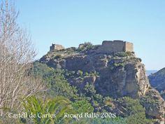 castillo de Alfara de Carles -