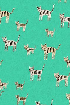 Tiger Stripes Turquoise by Alexia Marcelle Abegg