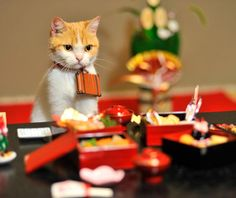 """""""おせち料理を食べるにょだ♪"""""""