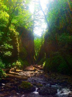 Oneonta Falls, Oregon | Summer 2013