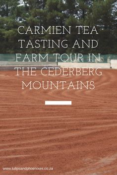 The perfect activity for an expectant mom - rooibos Carmien tea tasting and farm tour in the Cederberg mountains just outside Citrusdal. Malay Food, Food Pairing, South African Recipes, Foodie Travel, Road Trips, Places To See, Cape, Restaurants, Tours