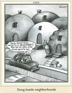 Far Side Cartoons, Far Side Comics, Funny Cartoon Memes, Funny Jokes, Funniest Cartoons, Hilarious, The Far Side Gallery, Gary Larson Cartoons, Great Comedies