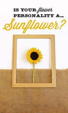 Are you a Sunflower? You tend to be a little ray of sunshine. You are very social, hence why you like to surround yourself with family and friends. People like your forever-positive contribution and fresh view on things. Share with us your flower personality for a chance to win $100 VISA gift card. https://activate.bloglovin.com/s/qTvRPev4n