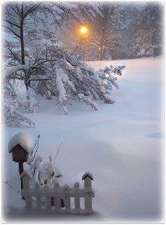 *Taken after a snow storm in Maryland - Beautiful!!!
