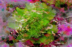 Peony Abstract