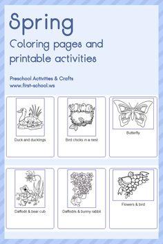 Letter K Kite Theme Lesson Plan Printable Activities