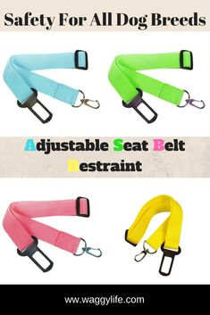 If your dog travels in the car, then it needs to travel safely. A seat belt is a must for safe travel in a car. Attaches to an existing seat belt, while the other end attaches to a dog harness. Keep them in the car at all times for convenient use. Free Shipping On This Product. Dog Belt, Dog Seat Belt, Seat Belts, Dog Harness, Dog Leash, Coco Chat, Dog Travel, Dog Walking, Road Trips