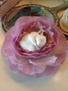 Not gonna lie, I kind of love this. Real taxidermy sleeping mouse hairflower by DeadBeatFX on Etsy, £30.00