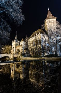 Vajdahunyad Castle, Budapest, Hungary - Explore the World with Travel Nerd… Places Around The World, The Places Youll Go, Places To See, Around The Worlds, Beautiful Castles, Beautiful Buildings, Beautiful World, Modern Buildings, Chateau Moyen Age