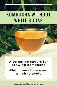 Kombucha brewed with other sugars. Does kombucha need white sugar. Kombucha with Agave syrup. Kombucha with molasses. KOmbucha research. Kombucha Health Benefits, Kombucha Flavors, How To Brew Kombucha, Healthy Drinks, Making Kombucha, Kombucha Fermentation, Kombucha Brewing, Recipes, Aguas Frescas