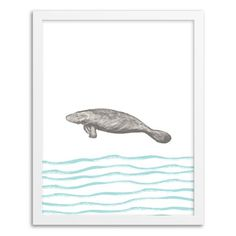 Framed Print - Manatee | west elm