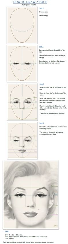 How to draw a face...really helpful for the dimensions.