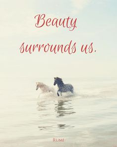"""""""Beauty surrounds us."""" ― Rumi. Click on this image to see the biggest collection of famous quotes on the net!"""