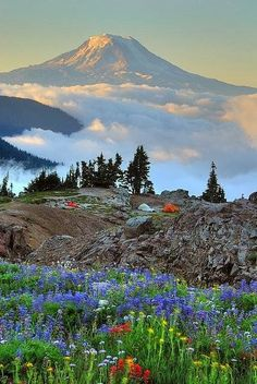 Mount Adams is a potentially active stratovolcano in the Cascade Range. It is…