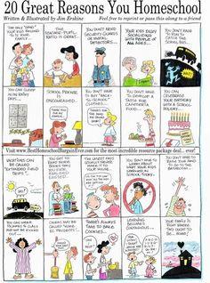 20 Great Reasons You Homeschool