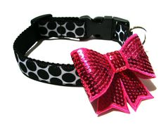 Black Collar with Hot Pink Bow