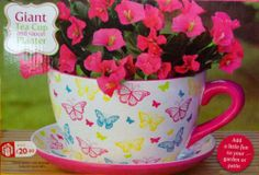 GIANT BUTTERFLY DESIGN TEA CUP AND SAUCER PLANTER PLANT POT Mothers Day Gift