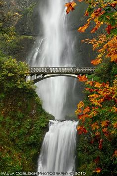 Multnomah Falls, Oregon - need to go back!