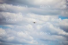 birds flying in the sky royalty-free stock photo