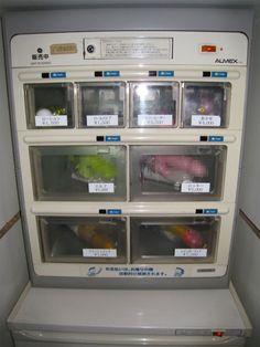 Buy something naughty out of a vending machine in a foreign country.  This one sells dildos!  :D