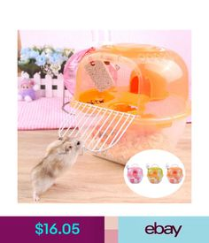 Small Animals 2018 2-Floors Storey Hamster Cage Mouse House Gerbil Mice With Carry Handle Cute #ebay #Home & Garden