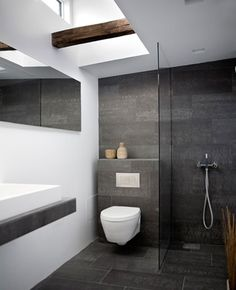 Nice, small, inconspicuous toilet and love simple shower design.