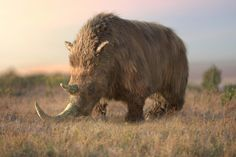 All animals from Ice Age Giants by kingrexy on DeviantArt Extinct Animals, Rare Animals, Stone Age Animals, Vida Animal, Terra Nova, Creature Drawings, Prehistoric Creatures, Ice Age, Fauna