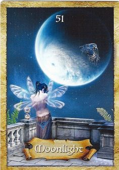 The card that was picked from The Enchanted Map oracle deck, by Coletter Baron-Reed, for this week turned out to be Moonlight. My first reaction was - But there is no moonlight at this time! Yet soon it became clear as I read the text, it is all about intuition and trusting that it will lead you to places and things unexpected; amazing even. I have a personal story to tell http://www.treeofenchantments.com/the-enchanted-map-sunday-march-30th-moonlight/