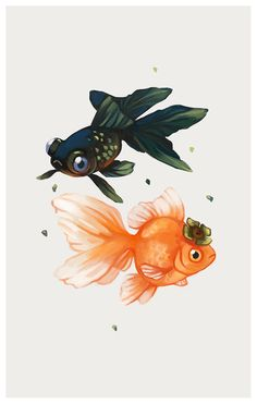 Goldfish, fish illustration, Tea Spirit - Persimmon by Heather Penn Fish Drawings, Animal Drawings, Art Drawings, Kunst Inspo, Art Inspo, Art And Illustration, Art Illustrations, Spirited Art, Fish Art