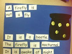 "Young & Lively Kindergarten: Eric Carle's ""The Lonely Firefly"""
