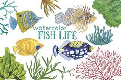 Fish life - watercolor clipart by ramika on @creativemarket