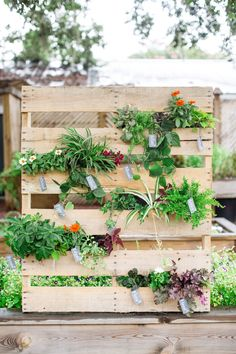 DIY pallet garden - photo by Izzy Hudgins Photography http://ruffledblog.com/best-of-2014-diy #diyproject #weddingdiy