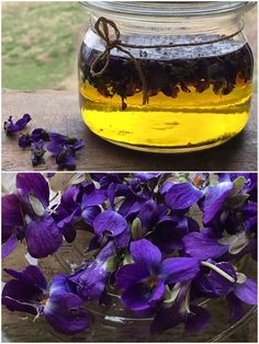 Fialkový olej Home Canning, Natural Cosmetics, Diy Mask, Homemade Beauty, Organic Beauty, Preserves, Health And Beauty, Wine Glass, Herbalism