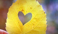 Eu devo a você um sorriso lindo, um abraço apertado, um beijo singelo. Mas meu amor eu não devo, pois ele já te pertence!
