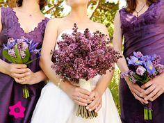 Combinación con color lila